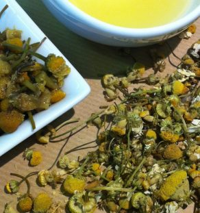 HERBAL Camomile 10-14